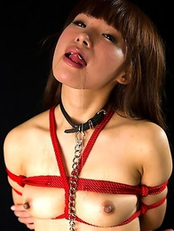 Mayu Itou is a perverted girl who cant get enough cock in her mouth.