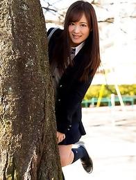 Japanese schoolgirl Sakura Miyuki showing panties